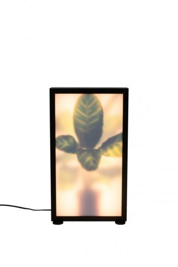 Verlichting Grow floor lamp Zuiver