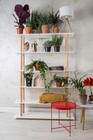 kast High on Wood bookshelf Zuiver